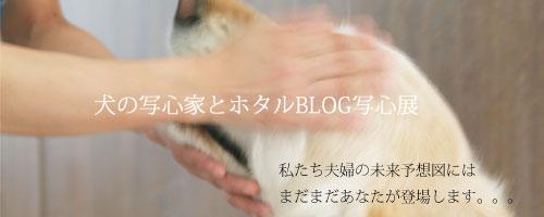 Bana2_7